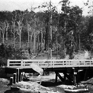 Back Creek, Advancetown, circa 1920s. Photographer unknown