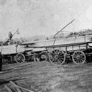 Timber at the Pioneer Sawmill, circa 1920s. Photographer unknown