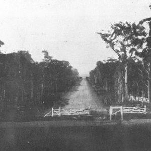 Palm Beach Avenue near Elanora railway siding, circa 1928. Photographer unknown