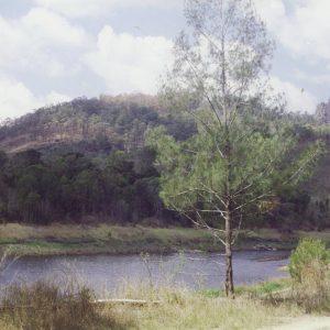 Upper reaches of the Hinze Dam catchment area, 26 September 2004. Susan Mills, photographer