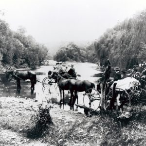 Horsedrawn vehicles crossing the Coomera River, circa 1911. Photographer unknown